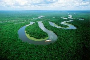 Презентацию по географии на тему река амазонка